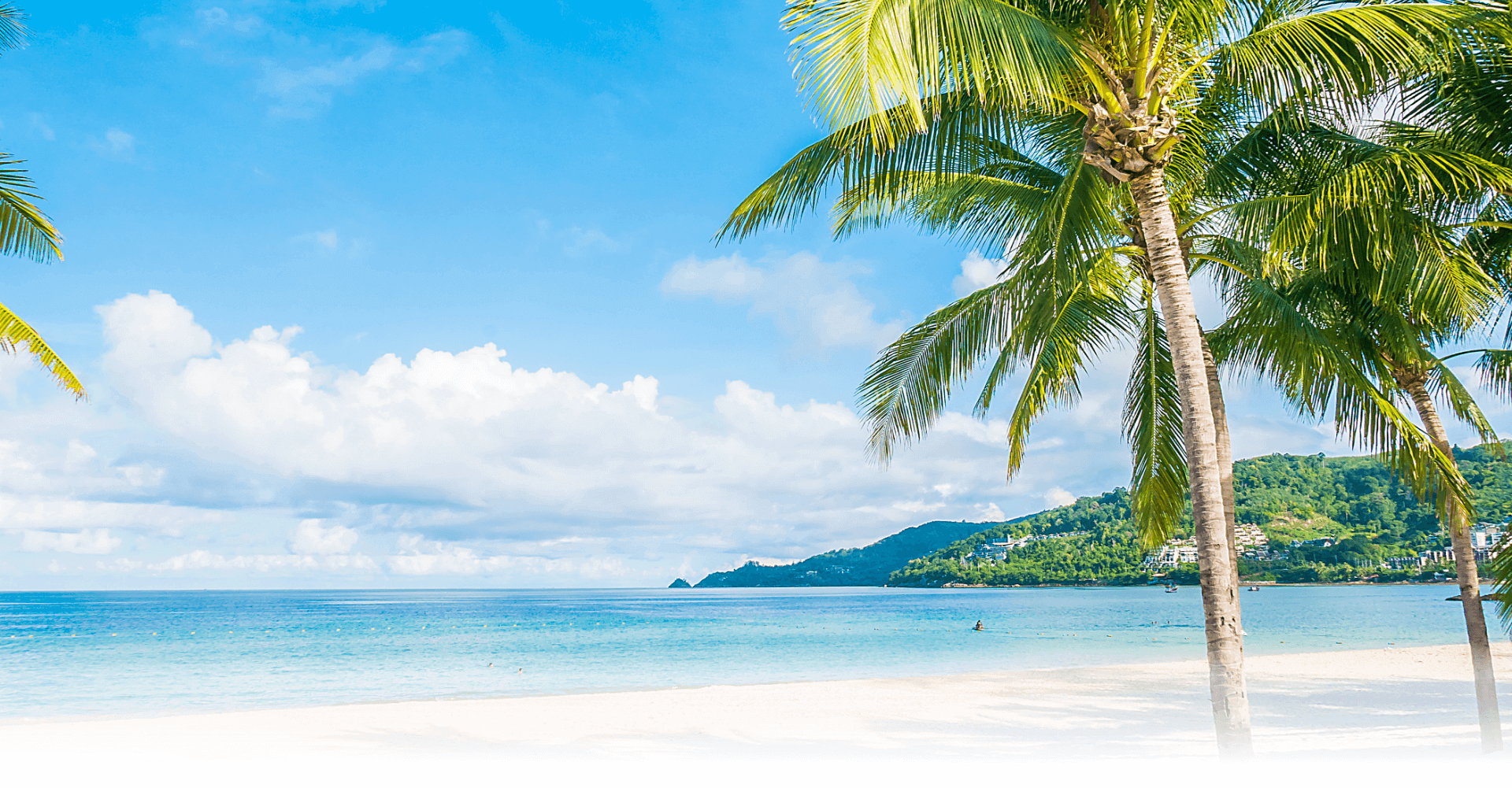 Pristine beach with palm tree, white sand, and cerulean seawater on a bright, sunny day.